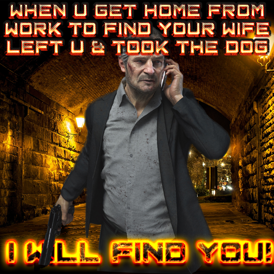 i-will-find-you-wife-dog-meme